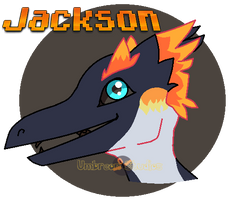 Jackson Headshot