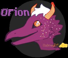 Orion Headshot