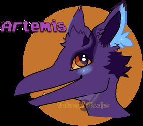 Artemis Headshot