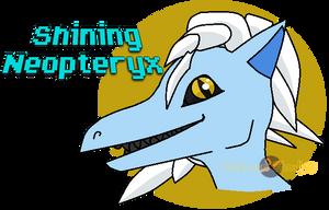 Shining Neopteryx Headshot