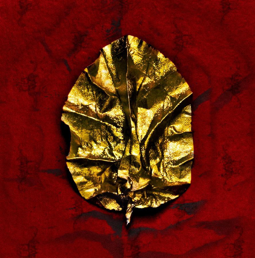 Golden Red Leaf by bulgphoto