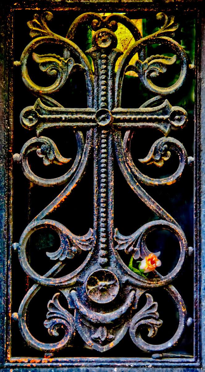 Cross Rose by bulgphoto