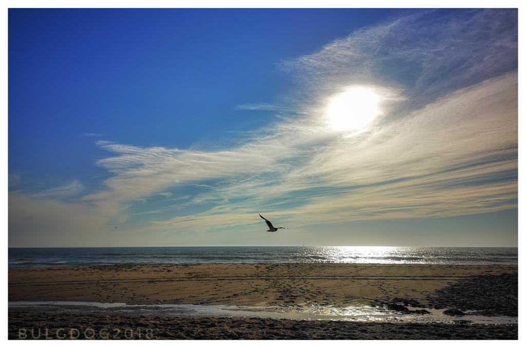 Hourtin-plage by bulgphoto