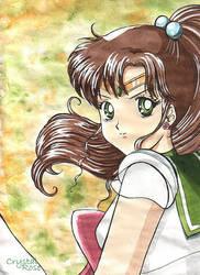 Sailor Jupiter by redheaded-step-child