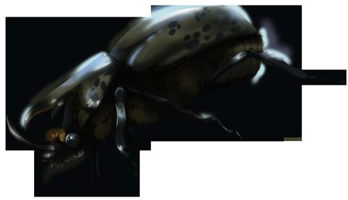 Elder Beetle - 10 Crystals by The-Below