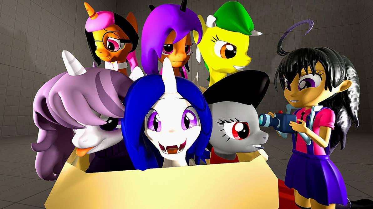 Box Ponies Pic