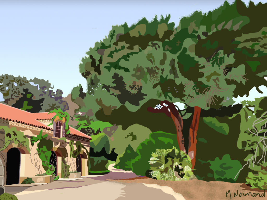 2016 05 24 jardin du var pin parasol by normandmi on for Jardins jardin 2016
