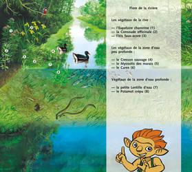 Marais-pourri_riviere