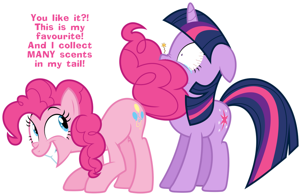 Pinkie Pie's tail by ZuTheSkunk