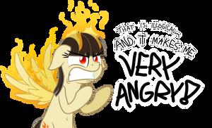 Commission: Wild Fire Rage