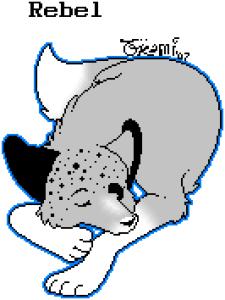 its-so-FLUFFY211's Profile Picture