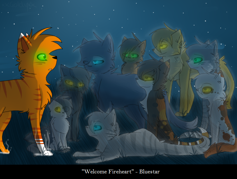 Fireheart's 9 lives by xseashell