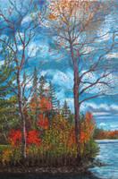 Colorful autumn by OlgaLola