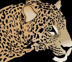 Jaguar by AdamZT2