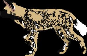 African Wild Dog by AdamZT2