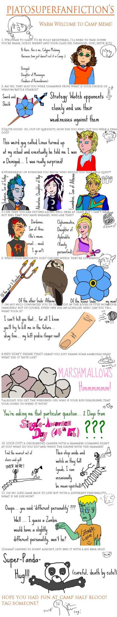 Percy Jackson Meme Picture Percy Jackson Meme Image