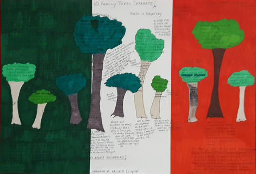 10 family trees separate diagram