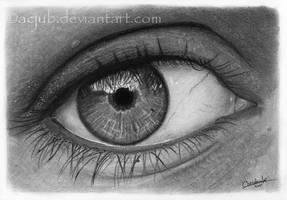 Eye of the artist by acjub
