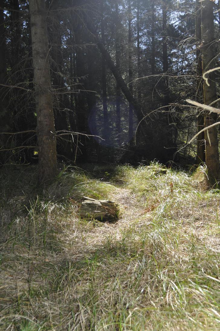 Spirits of Niwbwrch (film) by Salamander-Flame