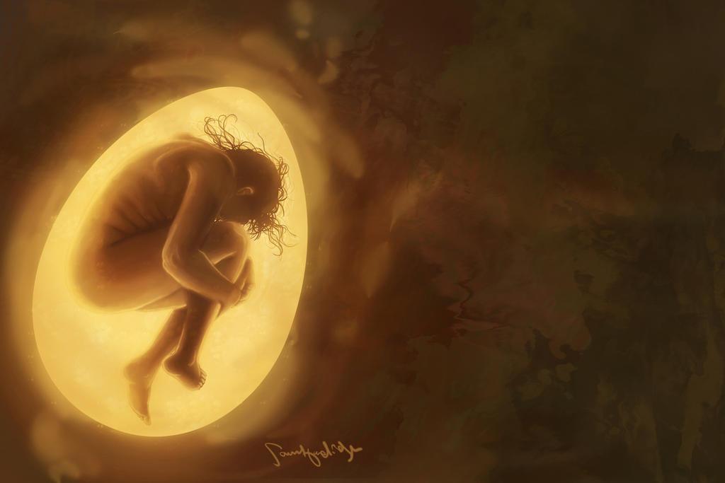 Egg by Samuel-Hardidge