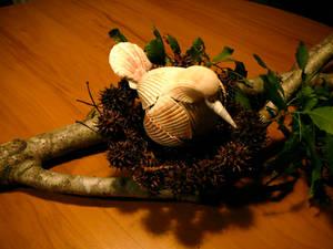 Seashell Bird