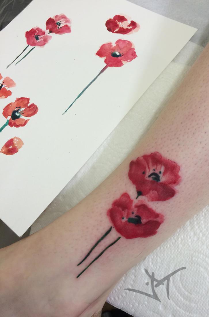 watercolor poppies by Janaina