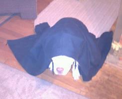 Roxxy The Sith Puppy by AlphaWolfAl
