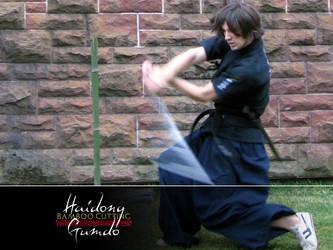 Haidong Gumdo Bamboo Cutting 2 by expressive-silence