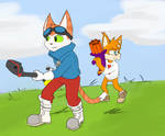 Blinx and Bubsy co-op