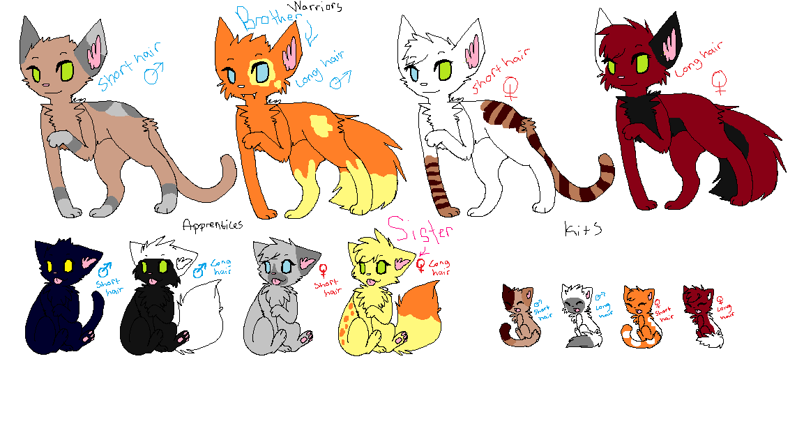 Warrior Cats Blossomkit Warrior Cat Adoptables by