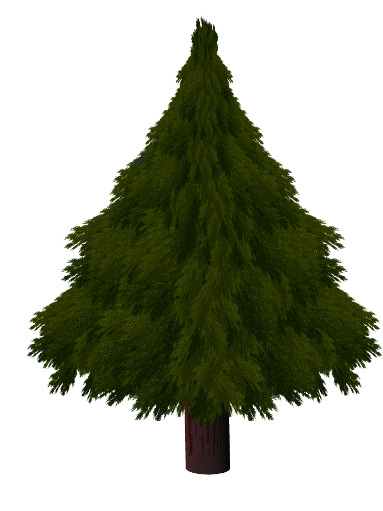 Realistic christmas tree drawing - Christmas Tree By Omagrandmother