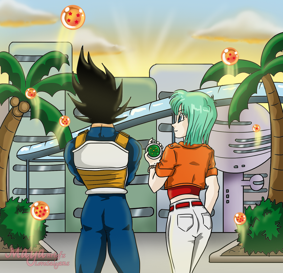 Looking for the Dragon Balls by mayabriefs