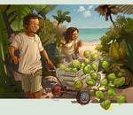 Coconuts 004
