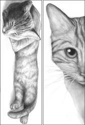 Bookmarks - Cats by Okamigan