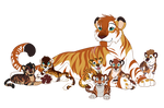 Tiger Daddo and Cubs