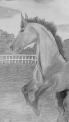 Horsey?