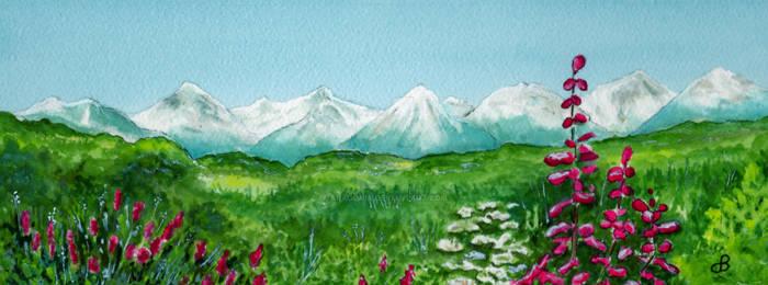 Alaska Splendor