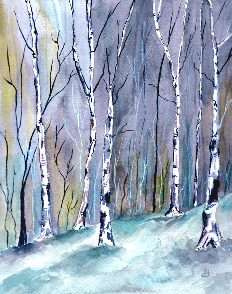 Birches in the Forest by aragonia