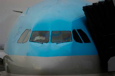 Flight Description by sealove0699