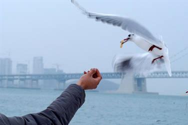 Nice catch by sealove0699