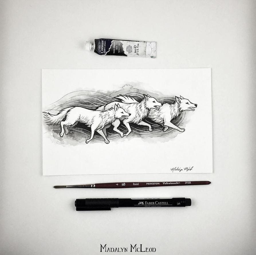 Wolves by Evanira