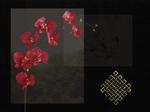 Ming ~ Dynasty Wallpaper