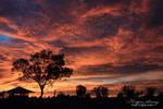 Fiery Dawn by OutbackReality