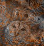 Owl by marbrure