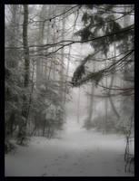 Bada - Forest by bada