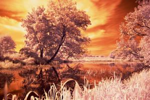 Arkadia IR by Liquid82