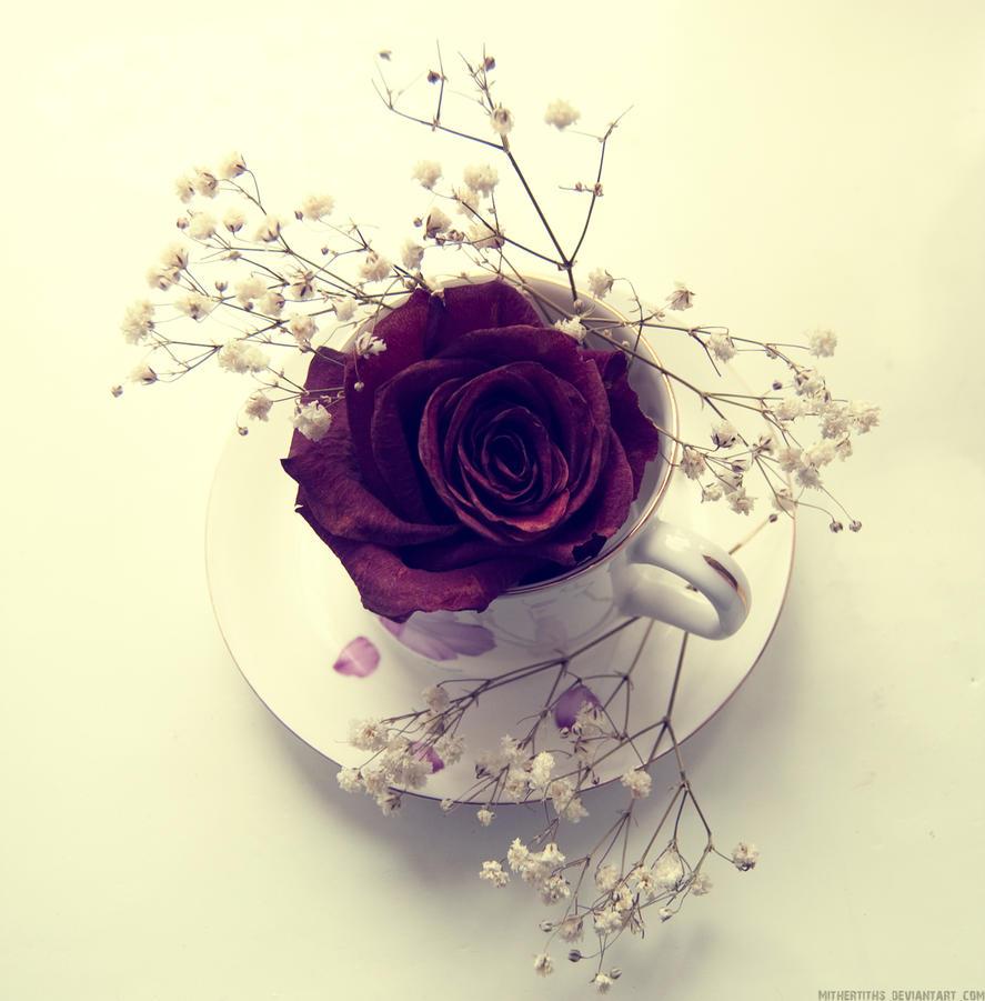 najromanticnija soljica za kafu...caj - Page 5 First_days_of_winter_by_mithertiths-d4i7tnb