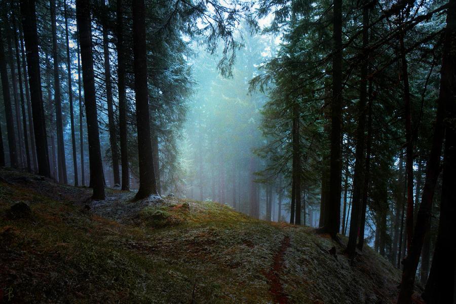 Of Wandering Souls