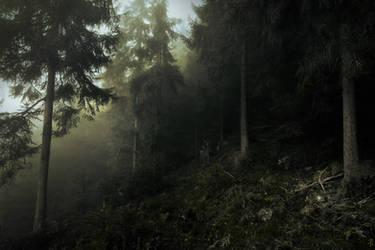 Darkwood Entrance by Yesterdawn