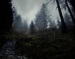 Frost by Yesterdawn